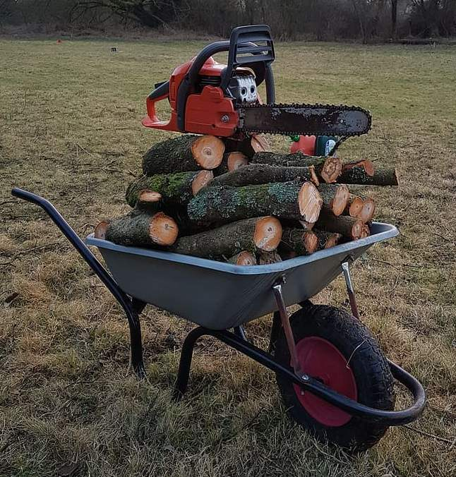 cart with logs and chainsaw